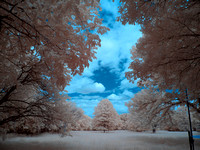 Crockett Park IR